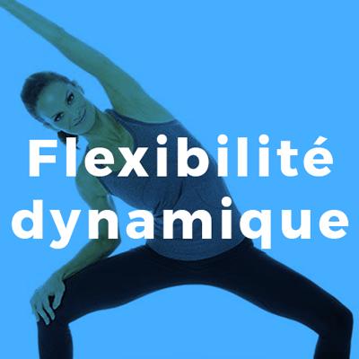 Flexibilité dynamique